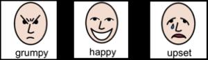 Grumpy happy sad